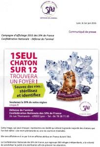 Stérilisation chats Affiche sensibilisation