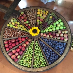 Roue de fruits Expo Fruits et nature 2015